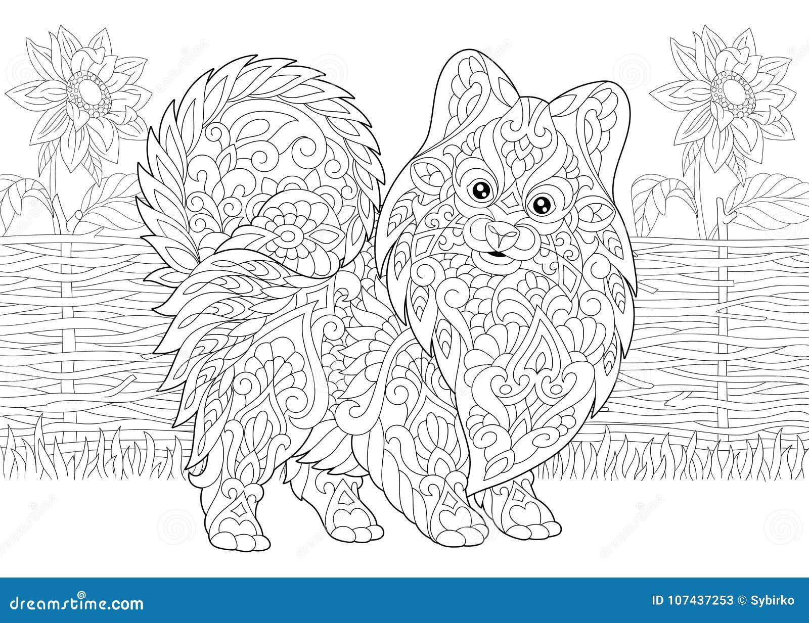 Perro De Pomerania Y Girasoles Pomeranian De Zentangle Ilustración ...