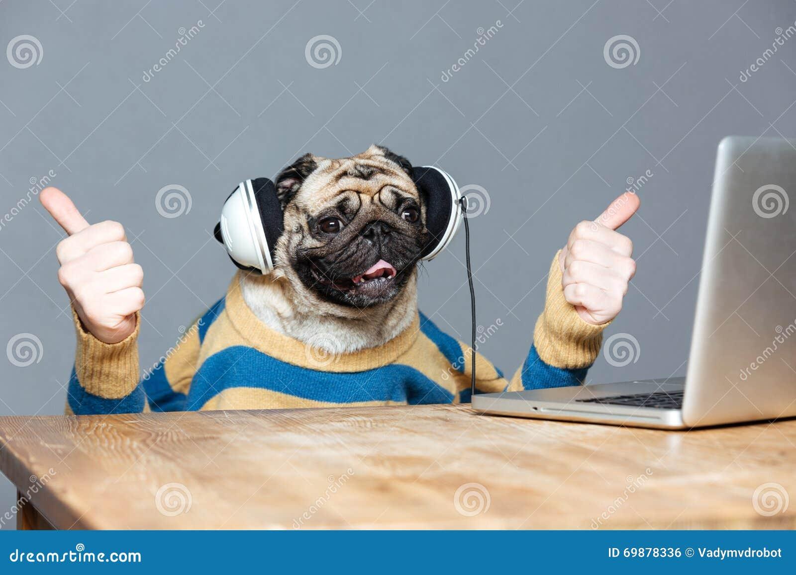 Perro del barro amasado con las manos del hombre en los auriculares que muestran los pulgares para arriba