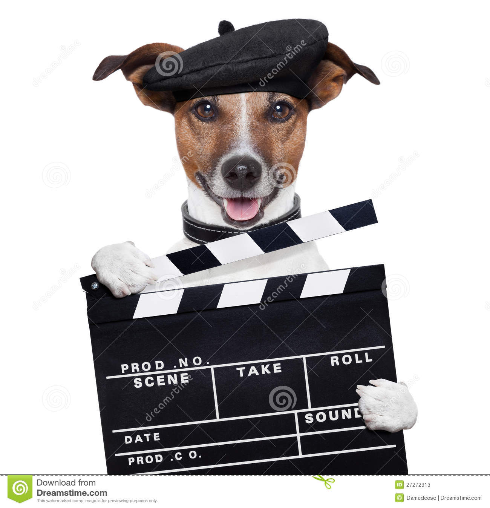 Perro del director de la tarjeta de chapaleta de la película
