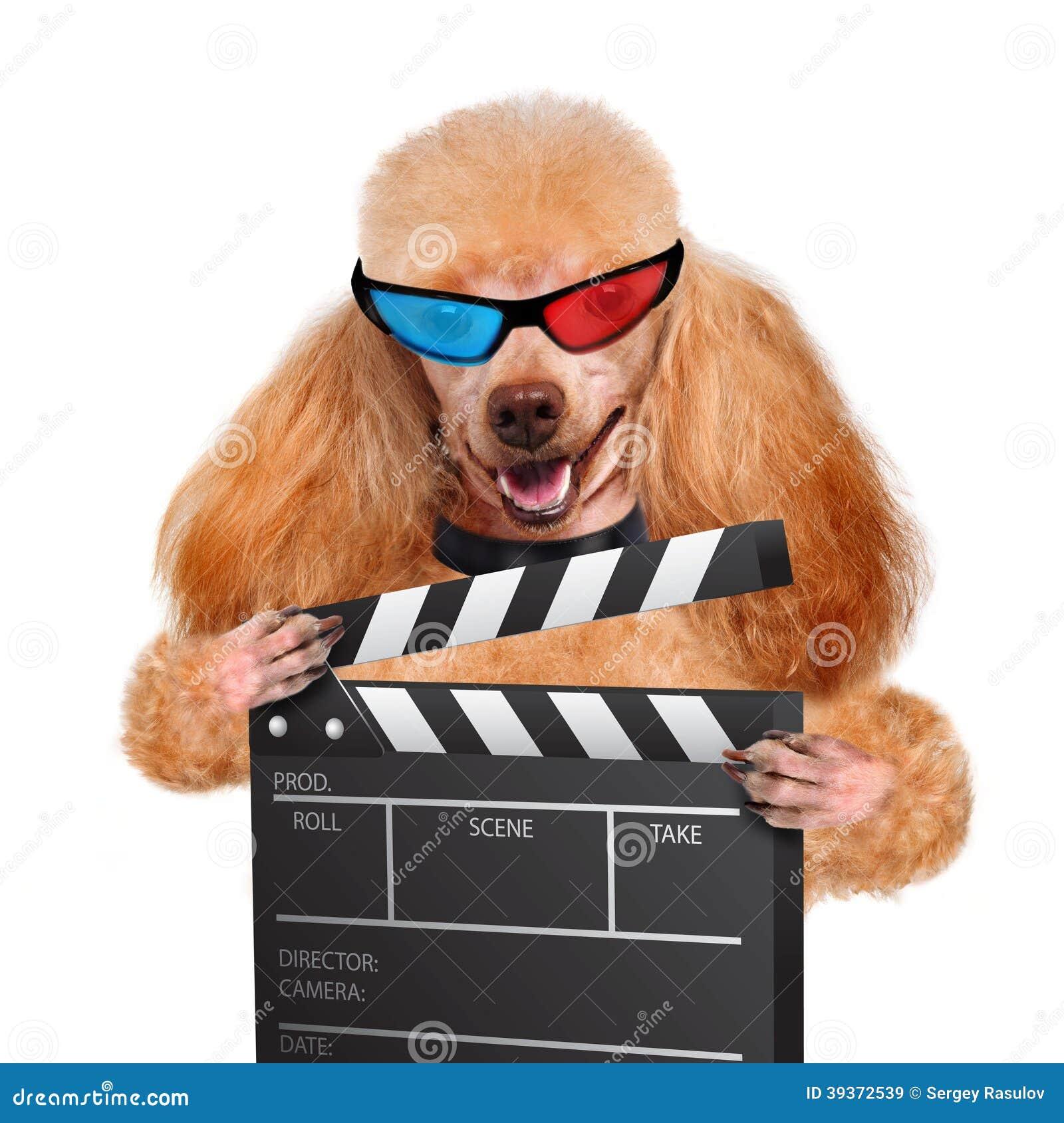 Perro del director del tablero de chapaleta de la película.