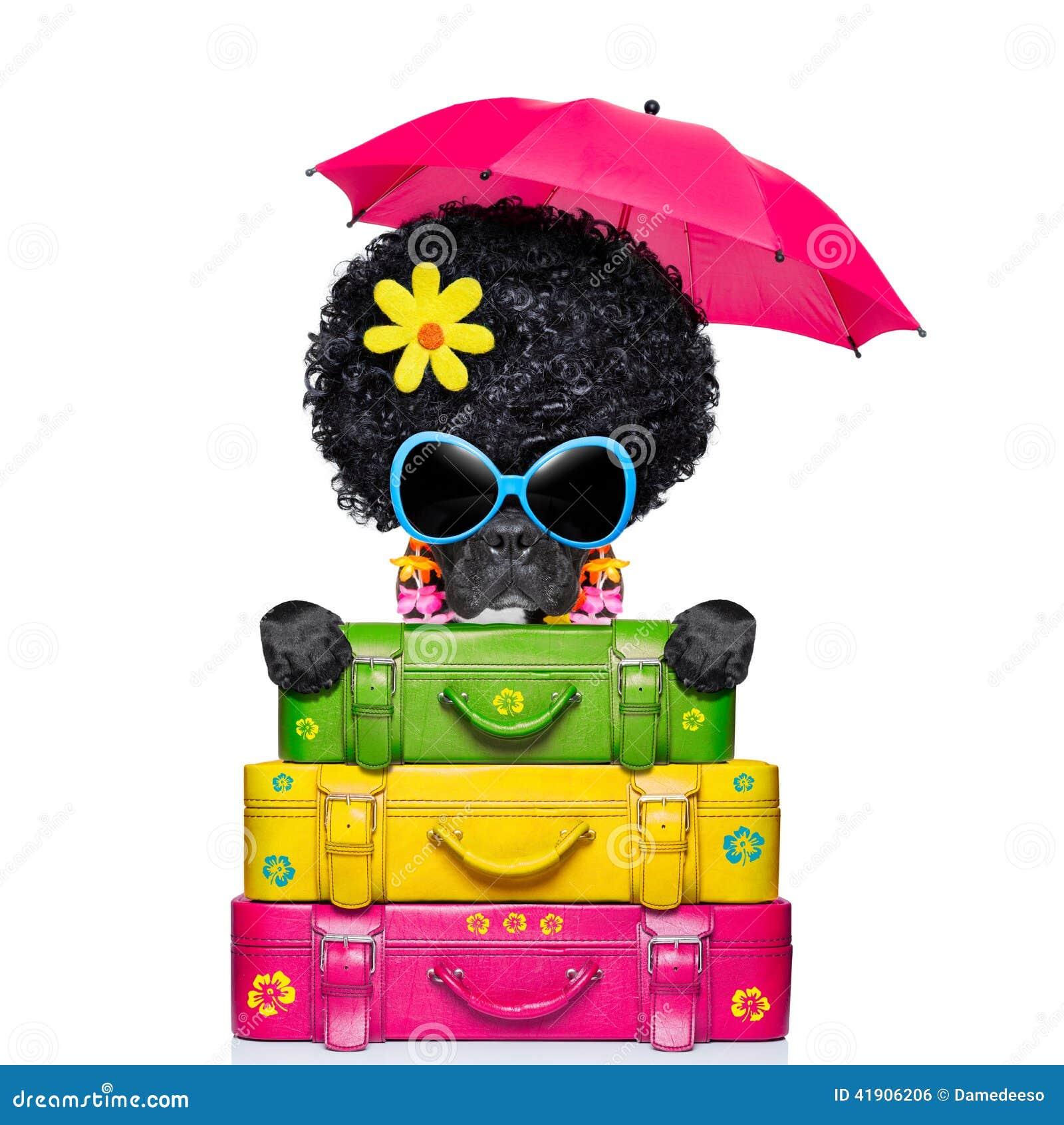 Perro del equipaje del día de fiesta