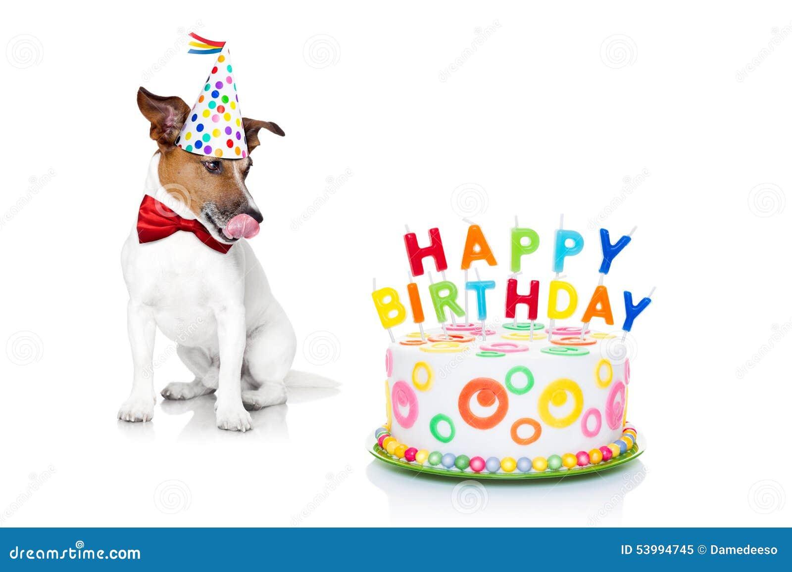 Perro del feliz cumpleaños