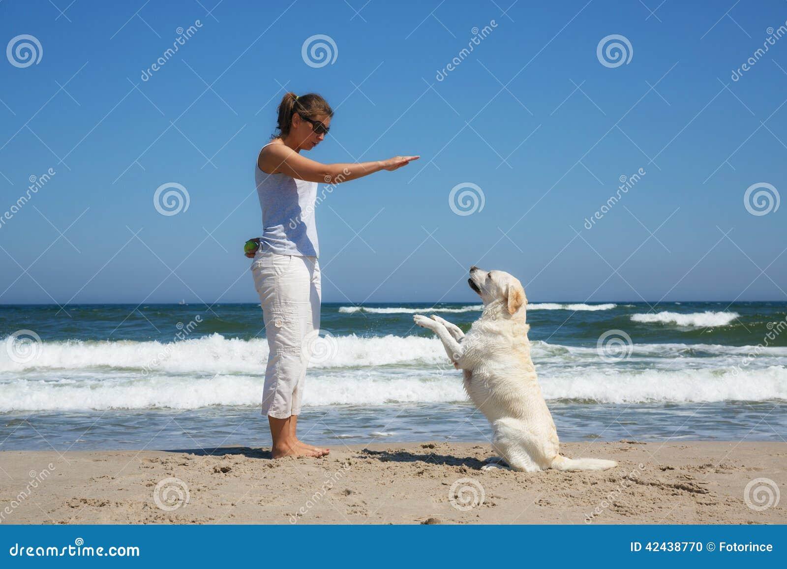 Perro del principiante de la mujer en la playa