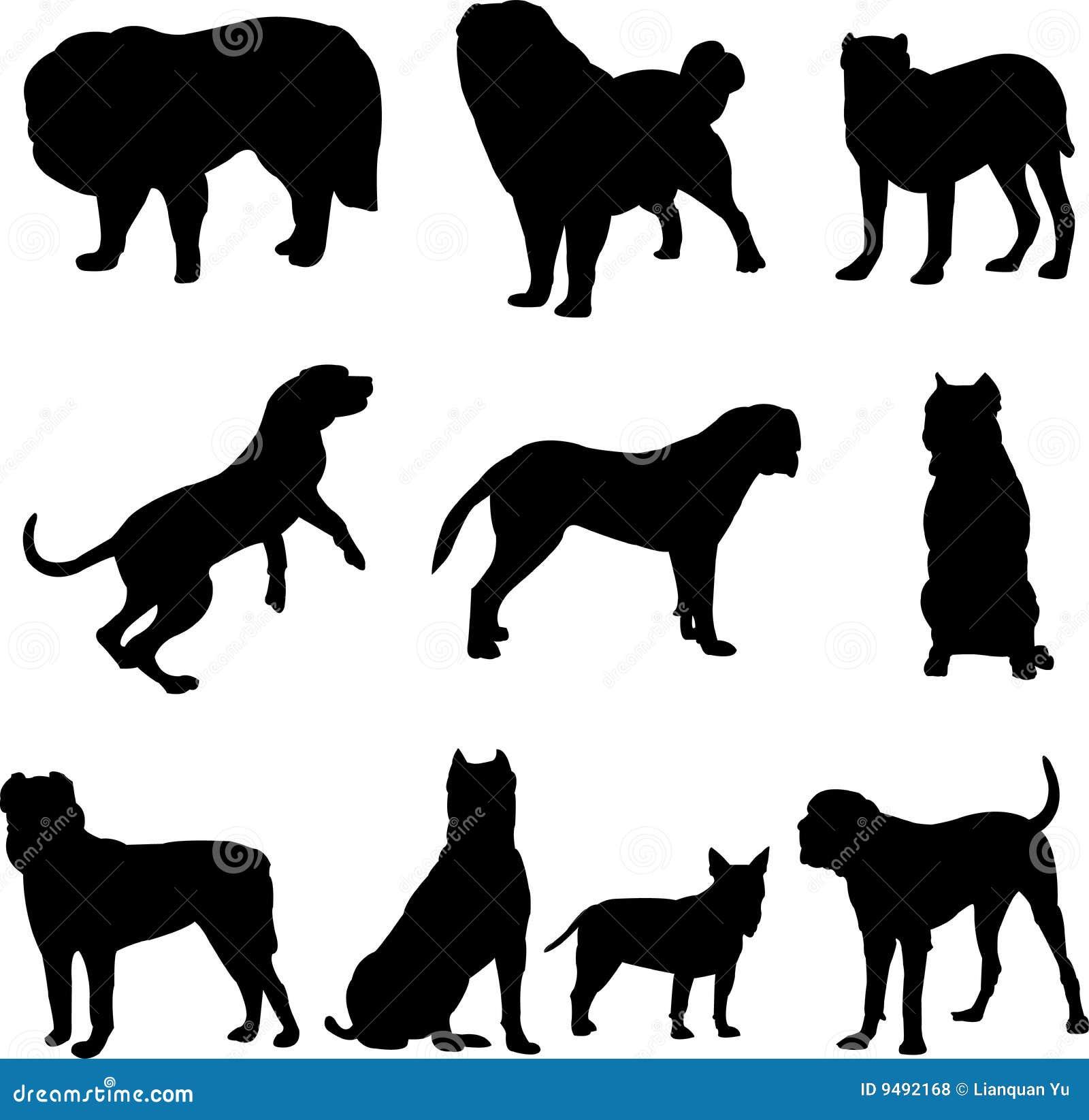 Perro famoso