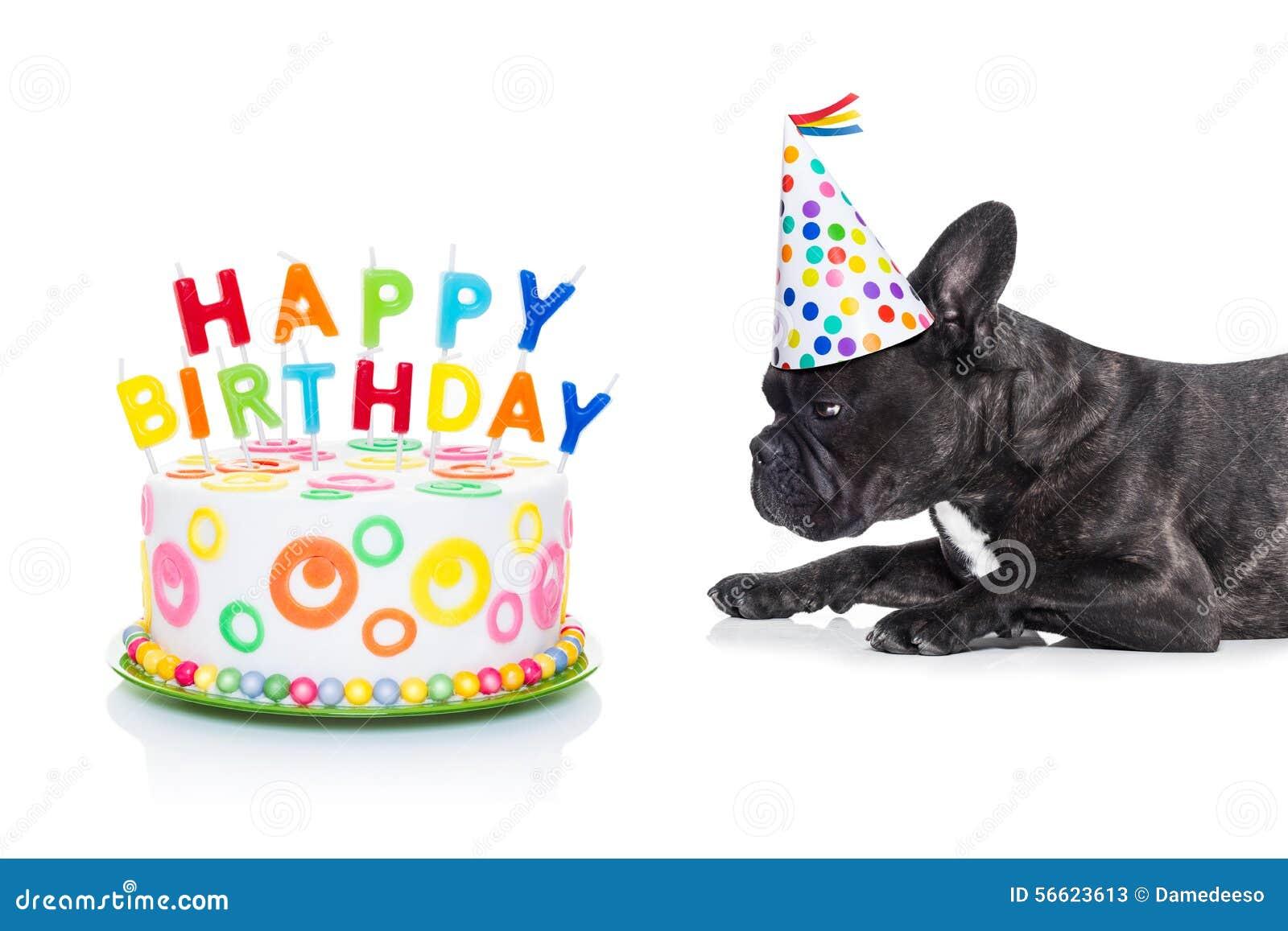 Perro y torta del feliz cumpleaños