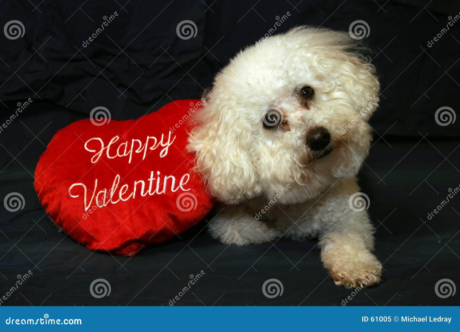 Perros 1 de la tarjeta del día de San Valentín