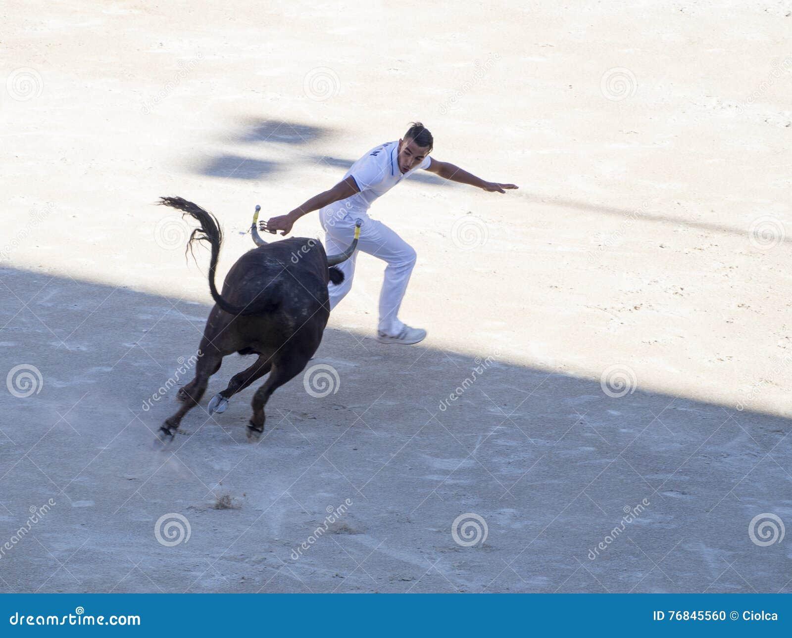 Perseguido por el toro