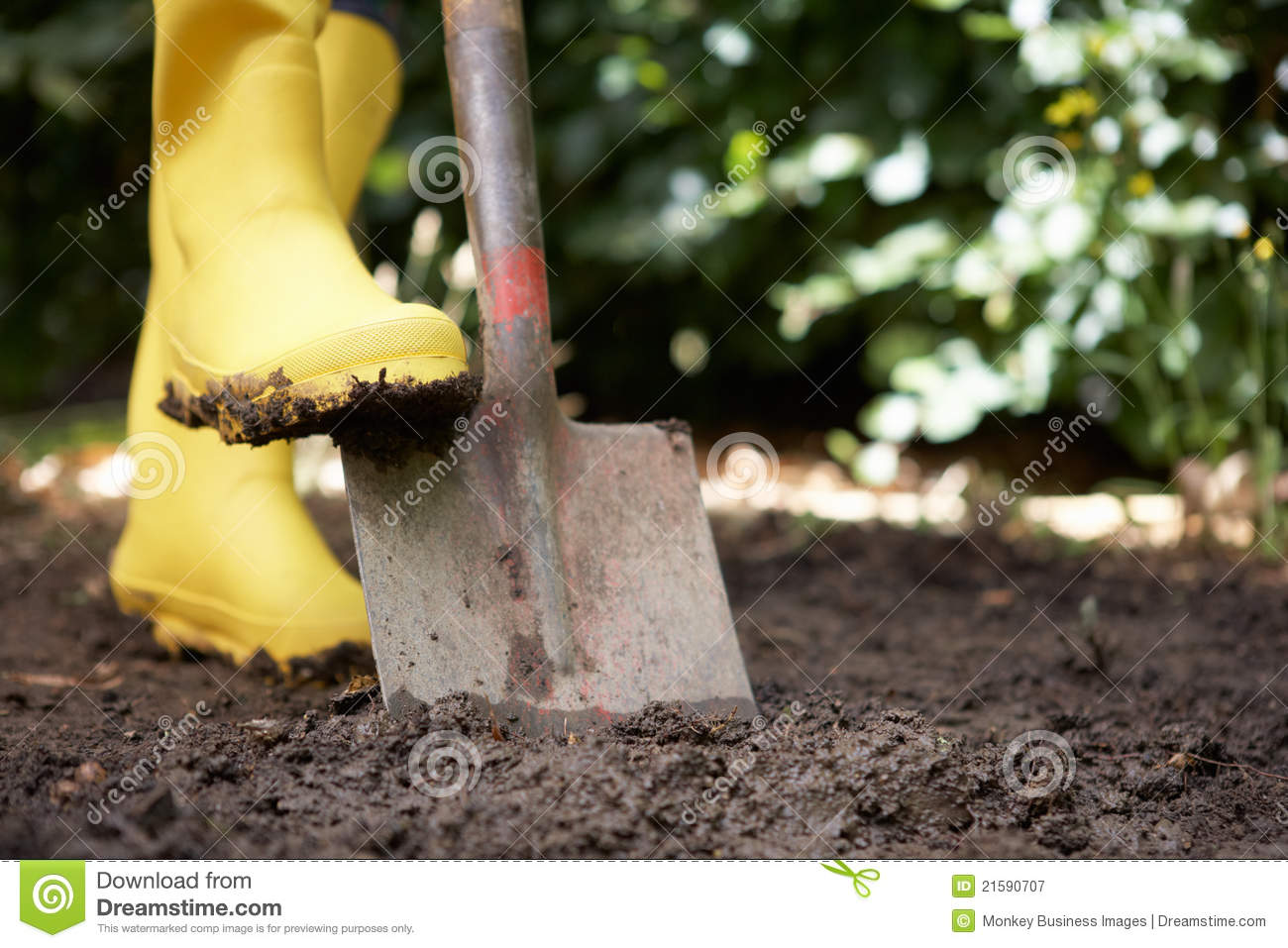 your digging in your garden and So the neighbourhood kitty keeps digging in your garden should you worry probably — a little luckily, there are several eco friendly solutions.