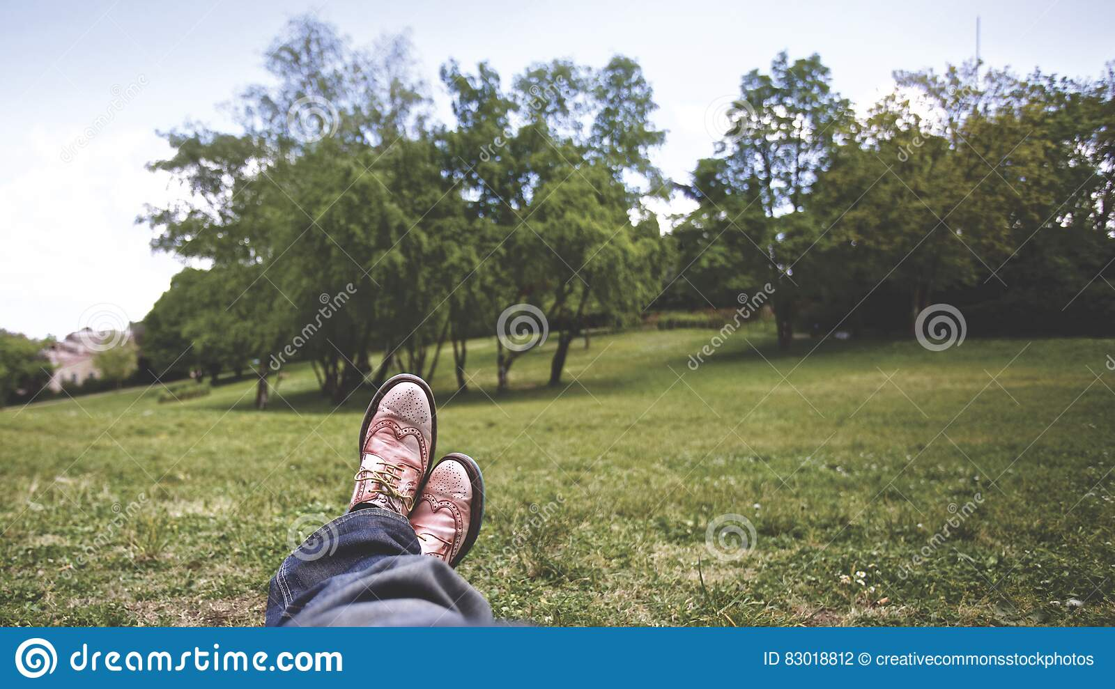 Download Person Lying On Grass Field Near Trees Under White Clouds During Daytime Stock Photo - Image of relax, stock: 83018812