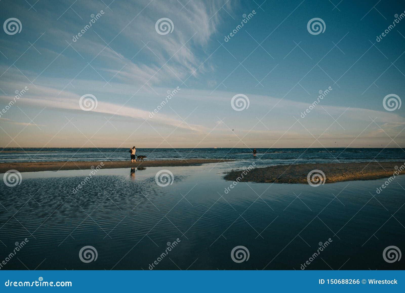 Person med en hund som lite går runt om sjön med att förbluffa himmel i bakgrunden