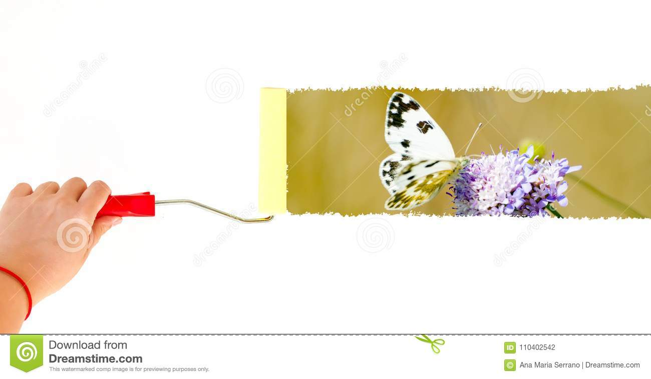 One Person Painting A Butterfly On A Flower On A White Wall With A