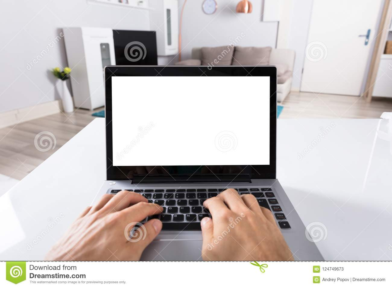Person Using Laptop On Desk