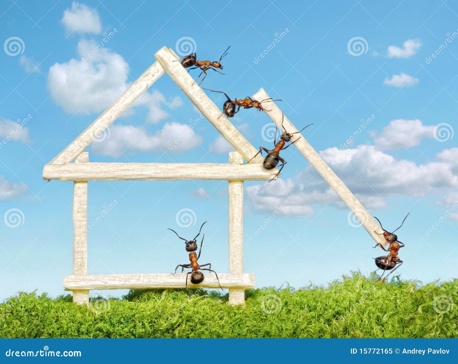 Personas de las hormigas que construyen la casa de madera