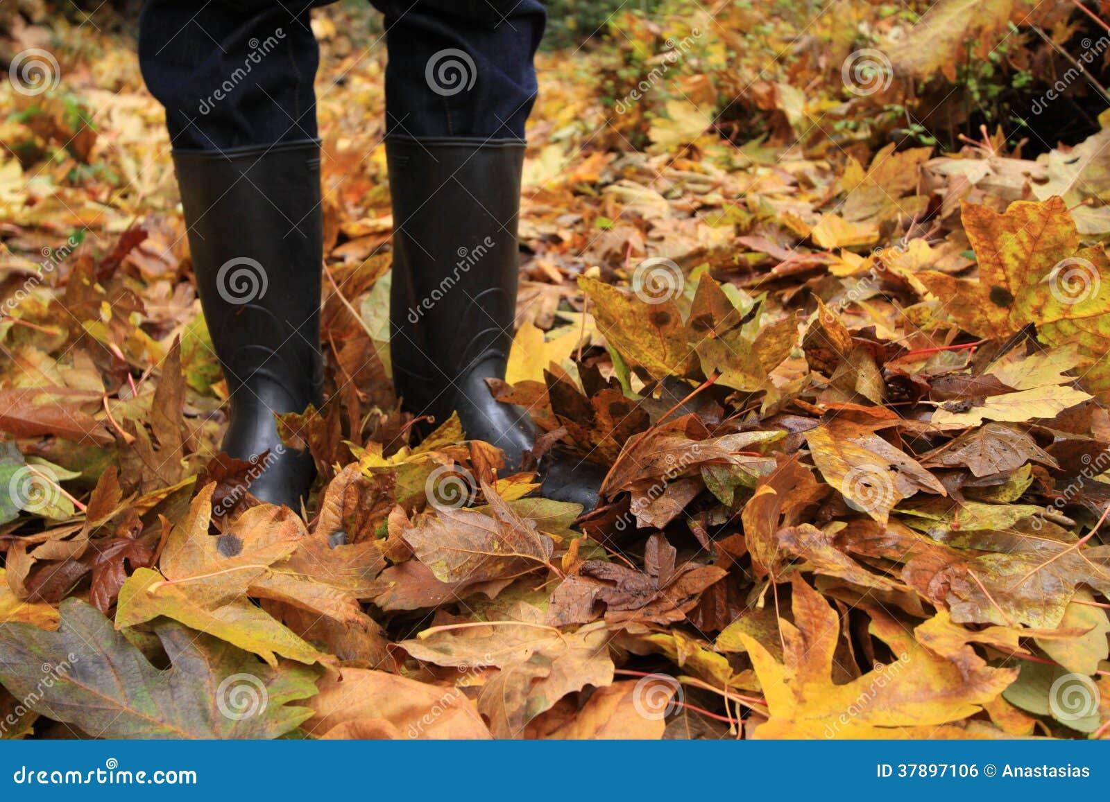 Persoon die zich onder het de herfstgebladerte bevinden