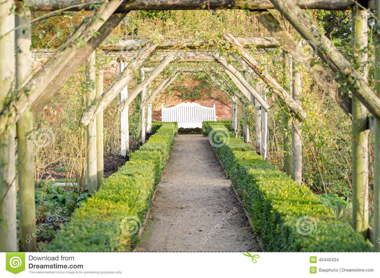 Perspective De Jardin Avec Le Banc Photo Stock Image