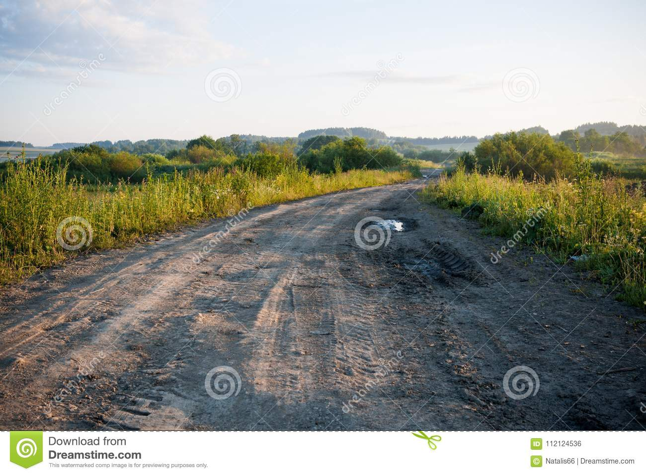 Perspective view of a ground country road and fields and the woo