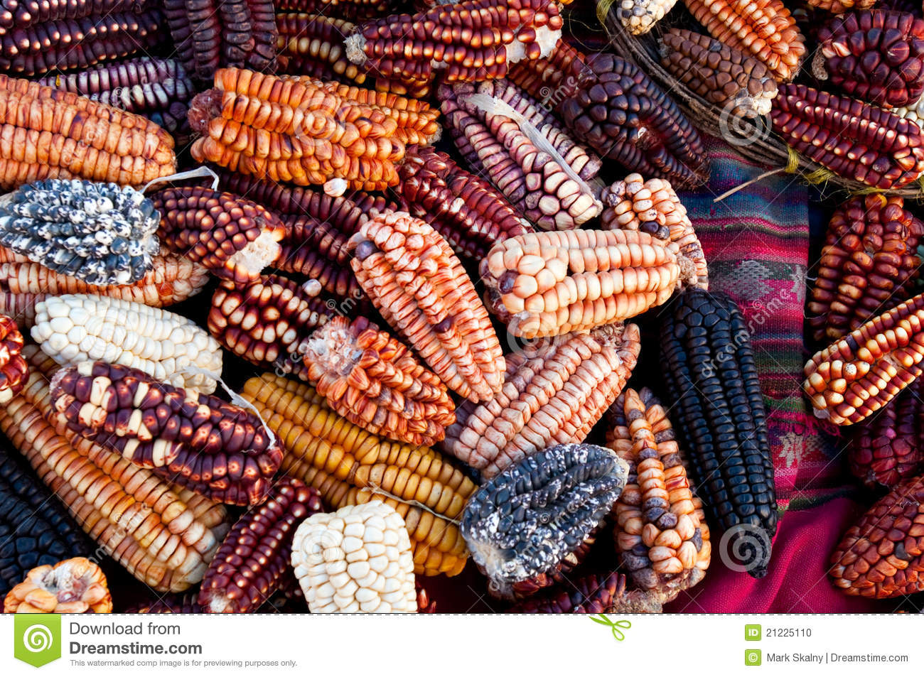 Several traditional varieties of corn in a Peru marketplace in the ...