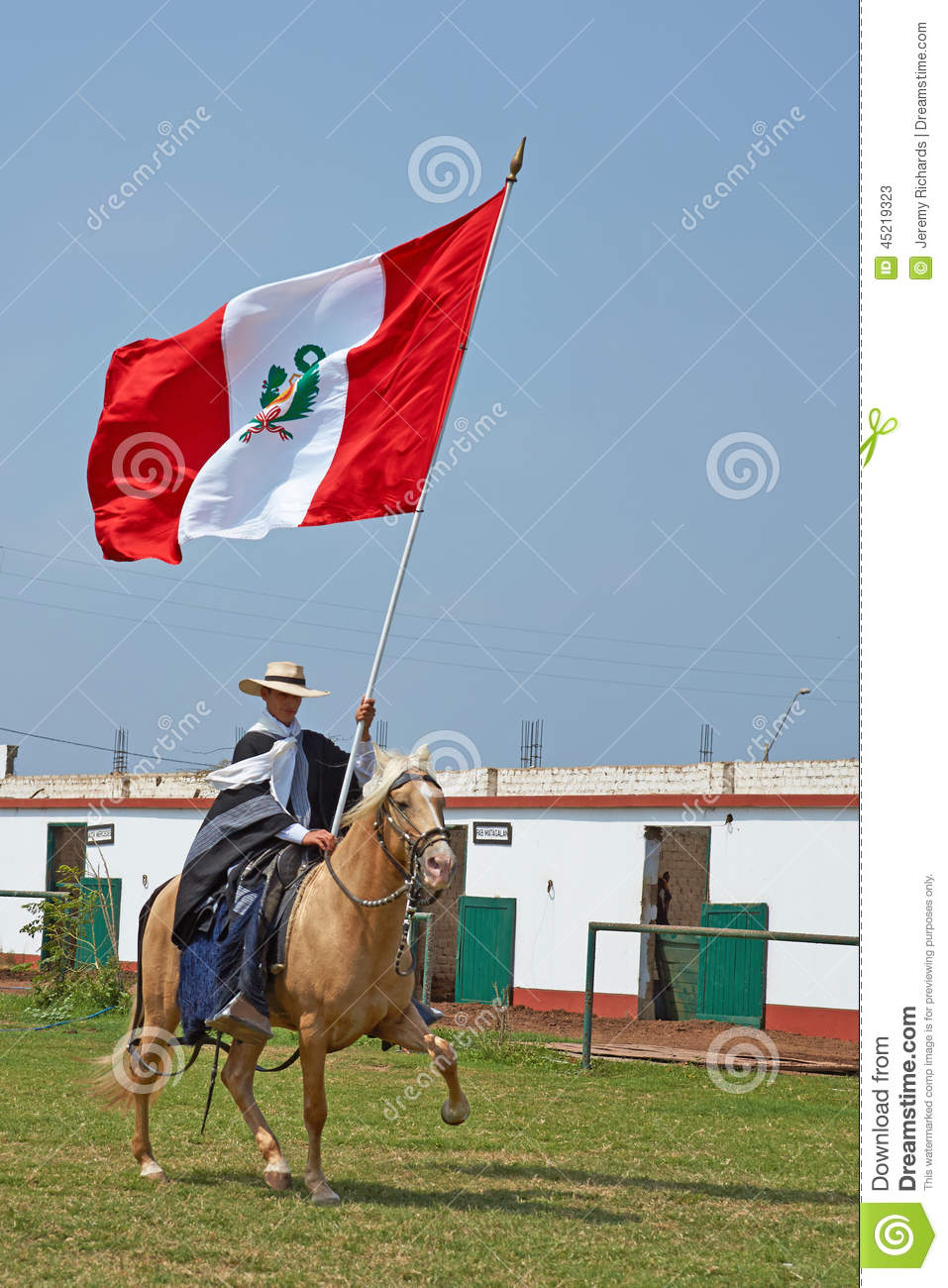 Peruvian White paso pictures best photo
