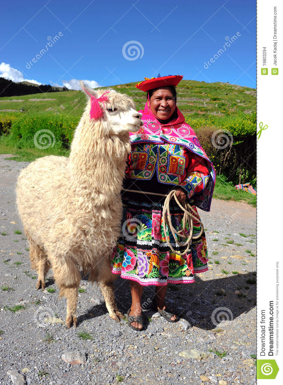 Peruvian Women Traditional Dress Lama Photos - Free & Royalty-Free Stock  Photos from Dreamstime