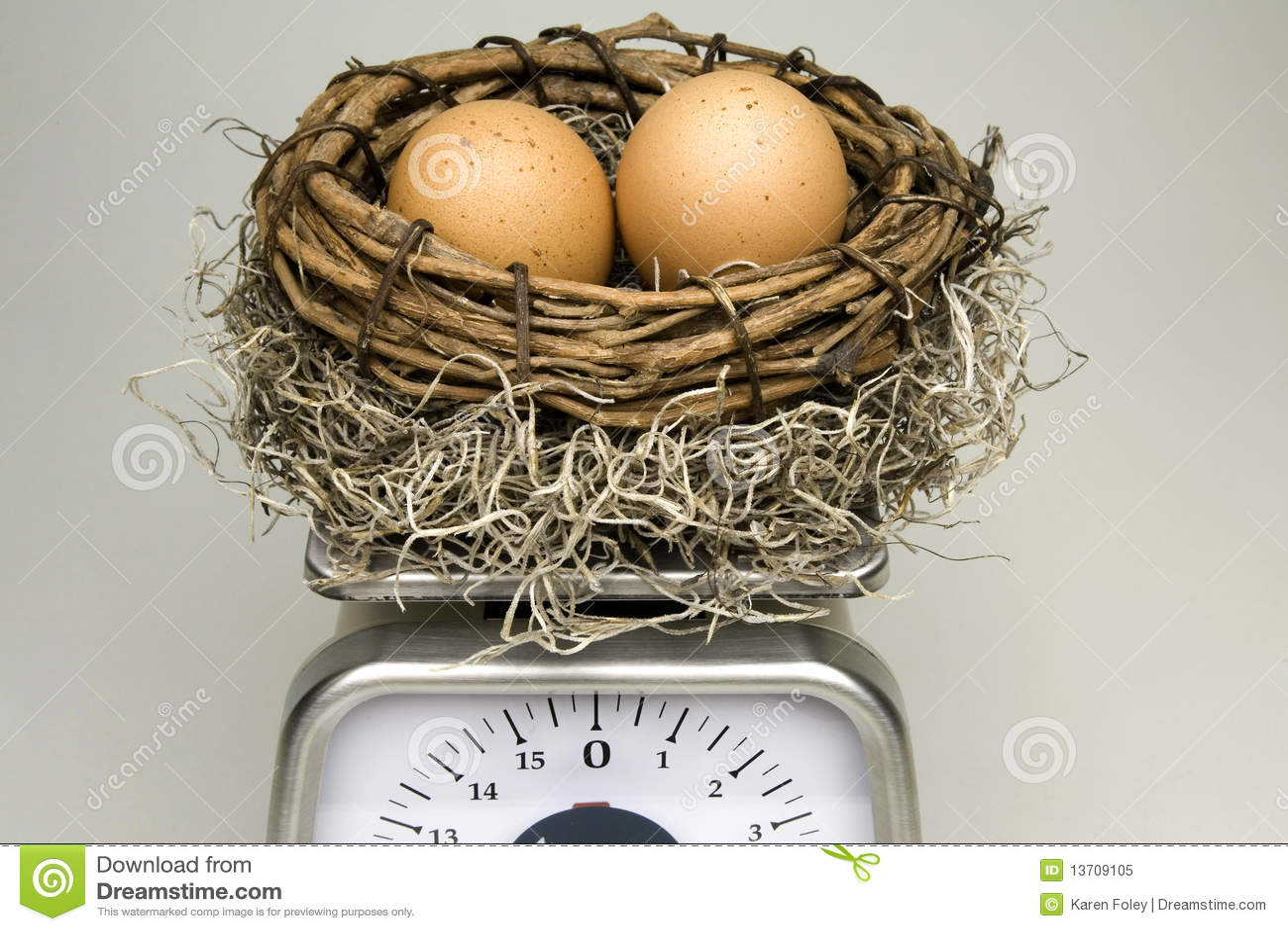 Pesatura dell uovo di nido