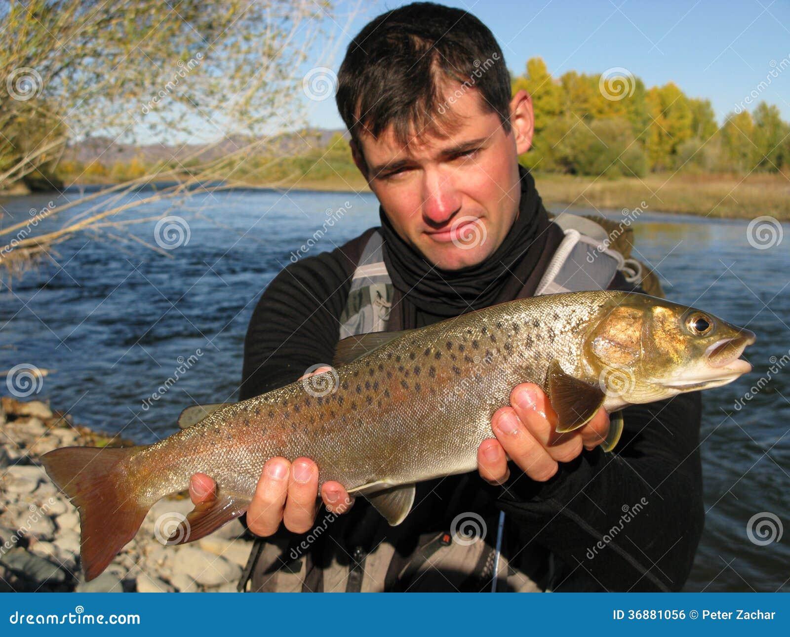 Download Pesca fotografia stock. Immagine di pesci, luccio, alba - 36881056
