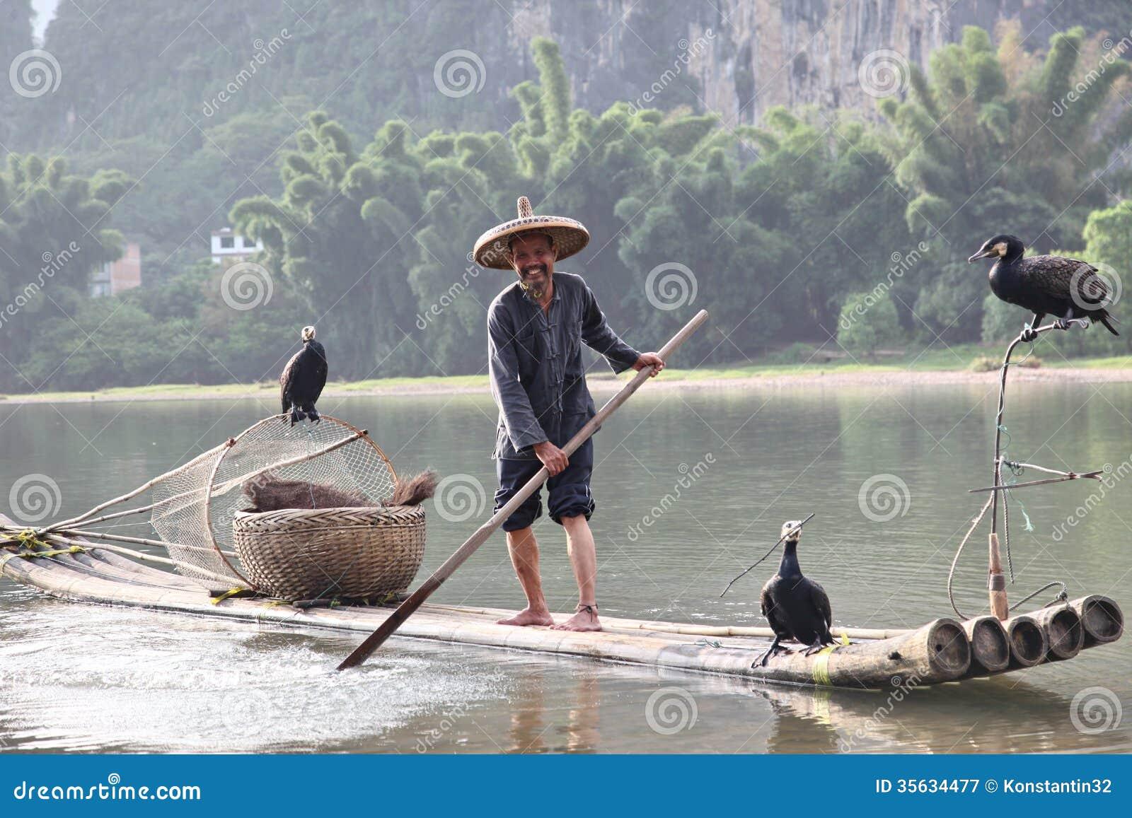 Pesca chinesa do homem com pássaros dos cormorões dentro