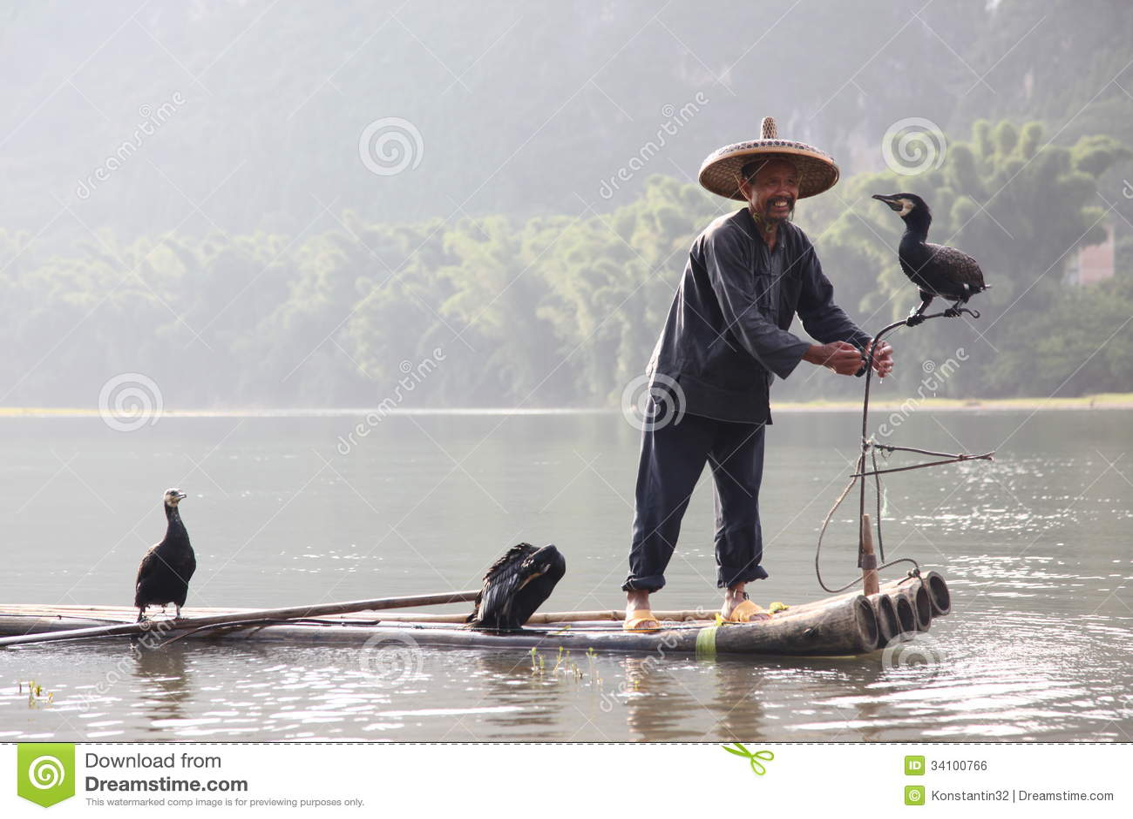 Pesca cinese dell uomo con gli uccelli dei cormorani dentro