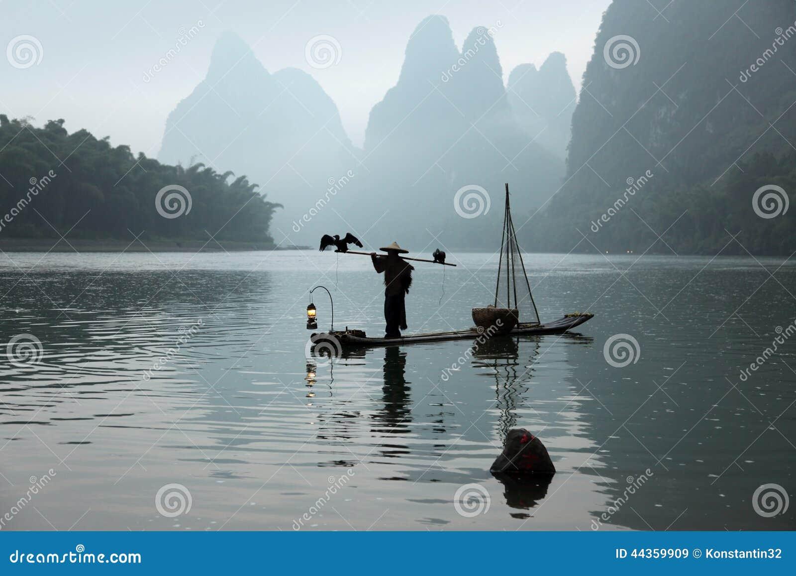 Pesca cinese dell uomo con gli uccelli dei cormorants