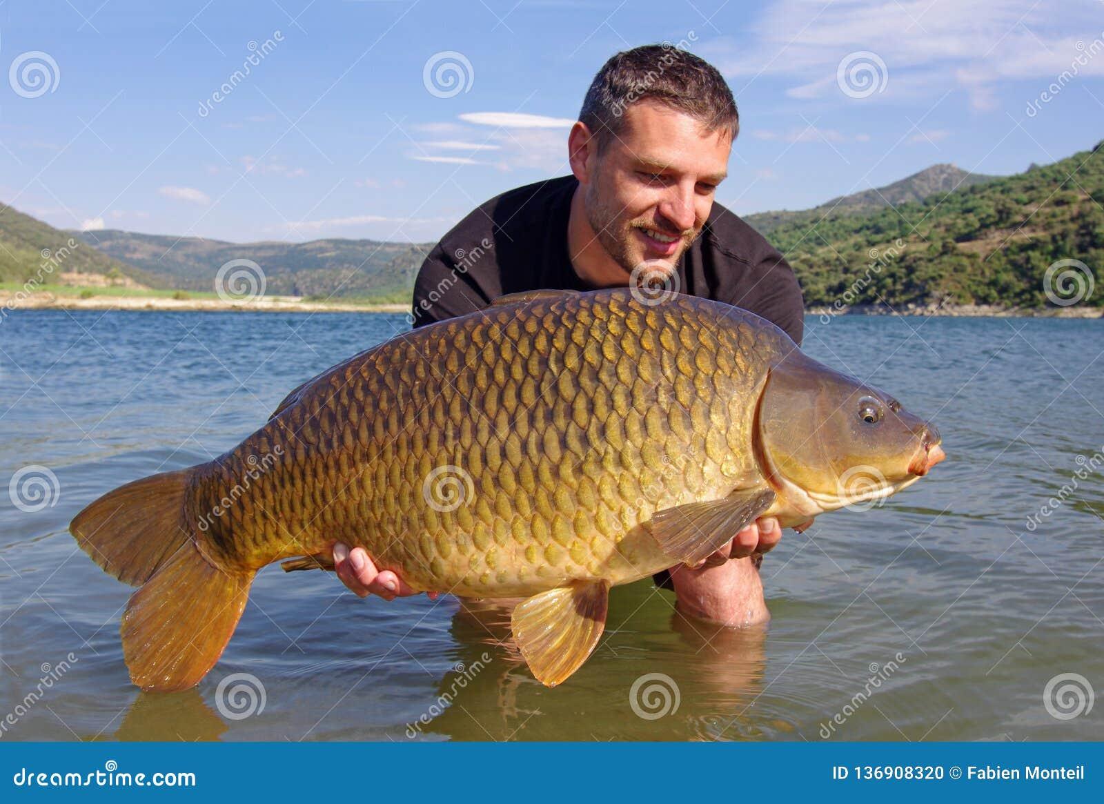 Pesca della carpa Cattura e versione