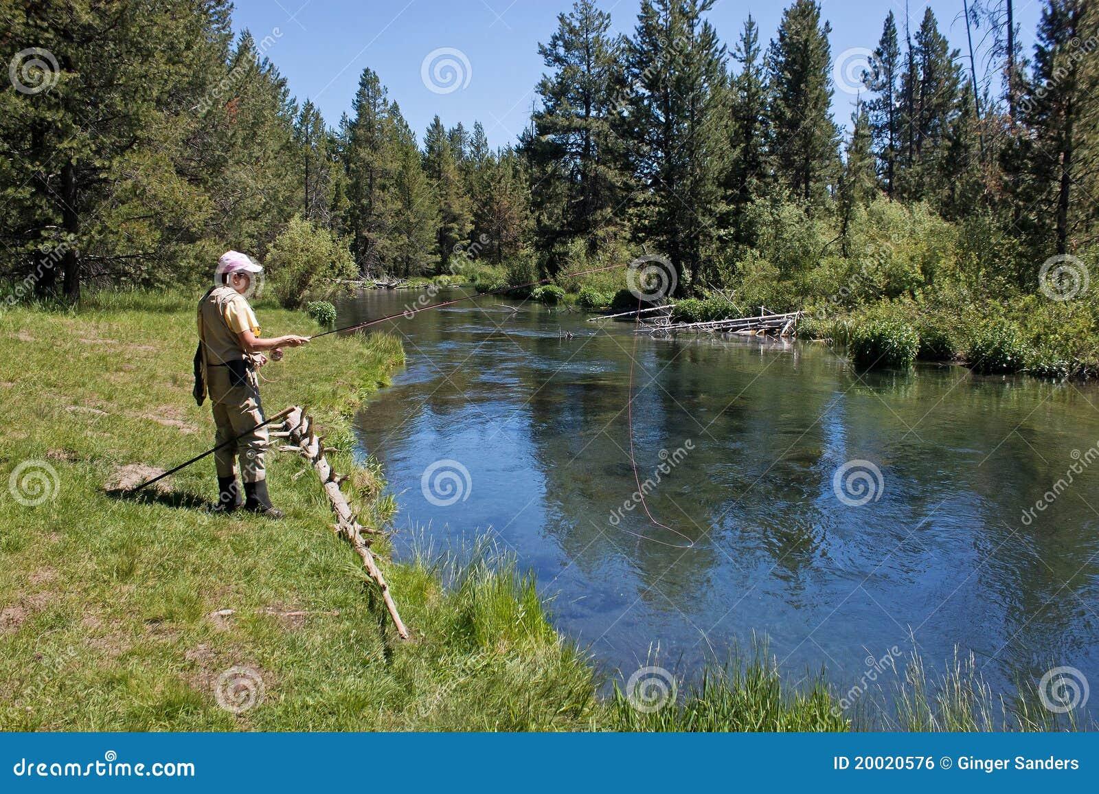 Giocare la pesca estiva in linea