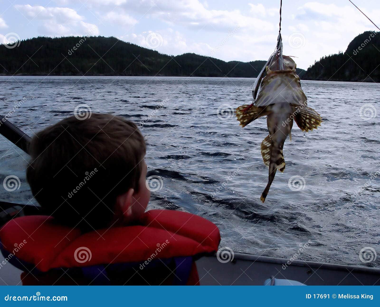 Pesca no barco
