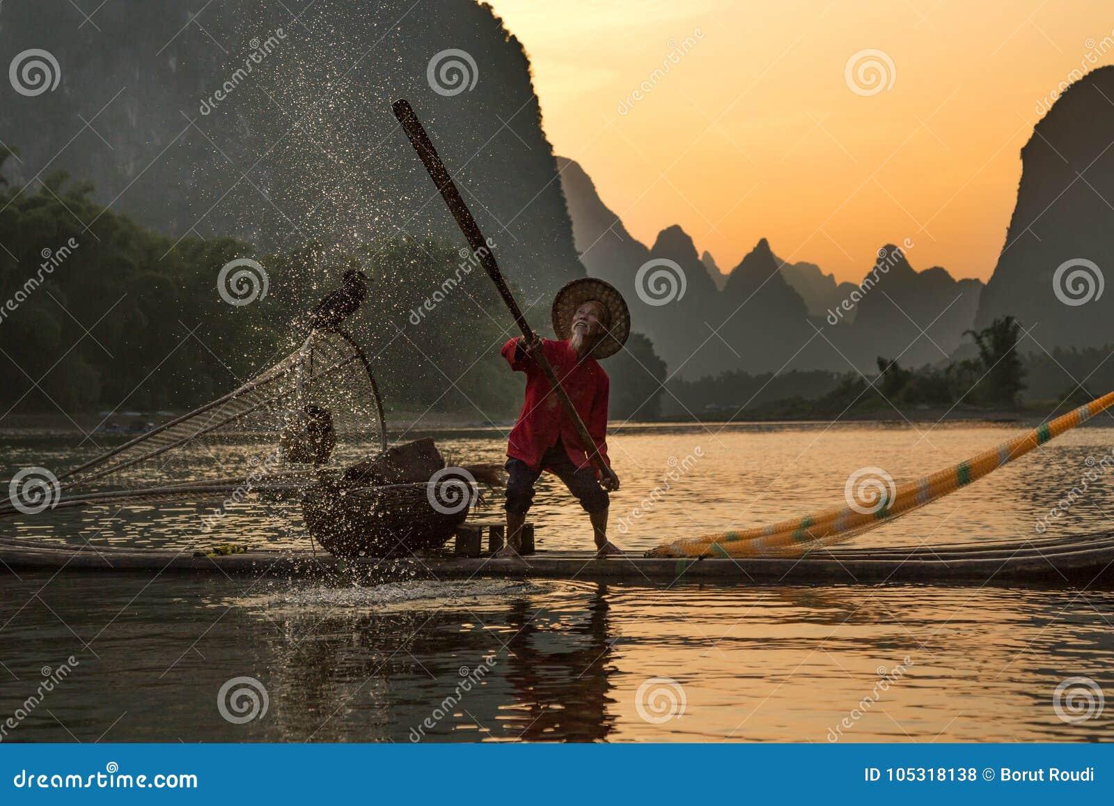 Pescador tradicional chinês com os cormorões que pescam, Li River
