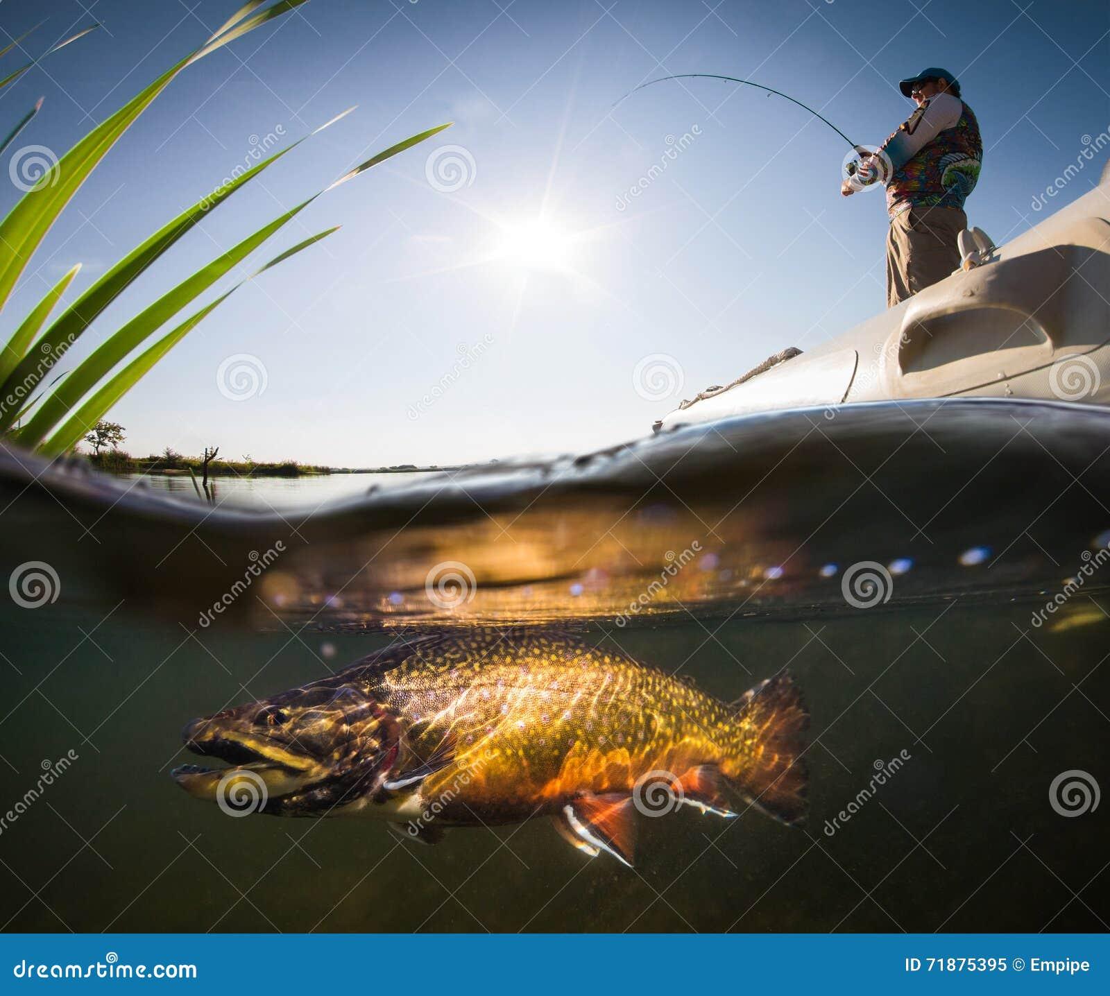 Pescador y trucha