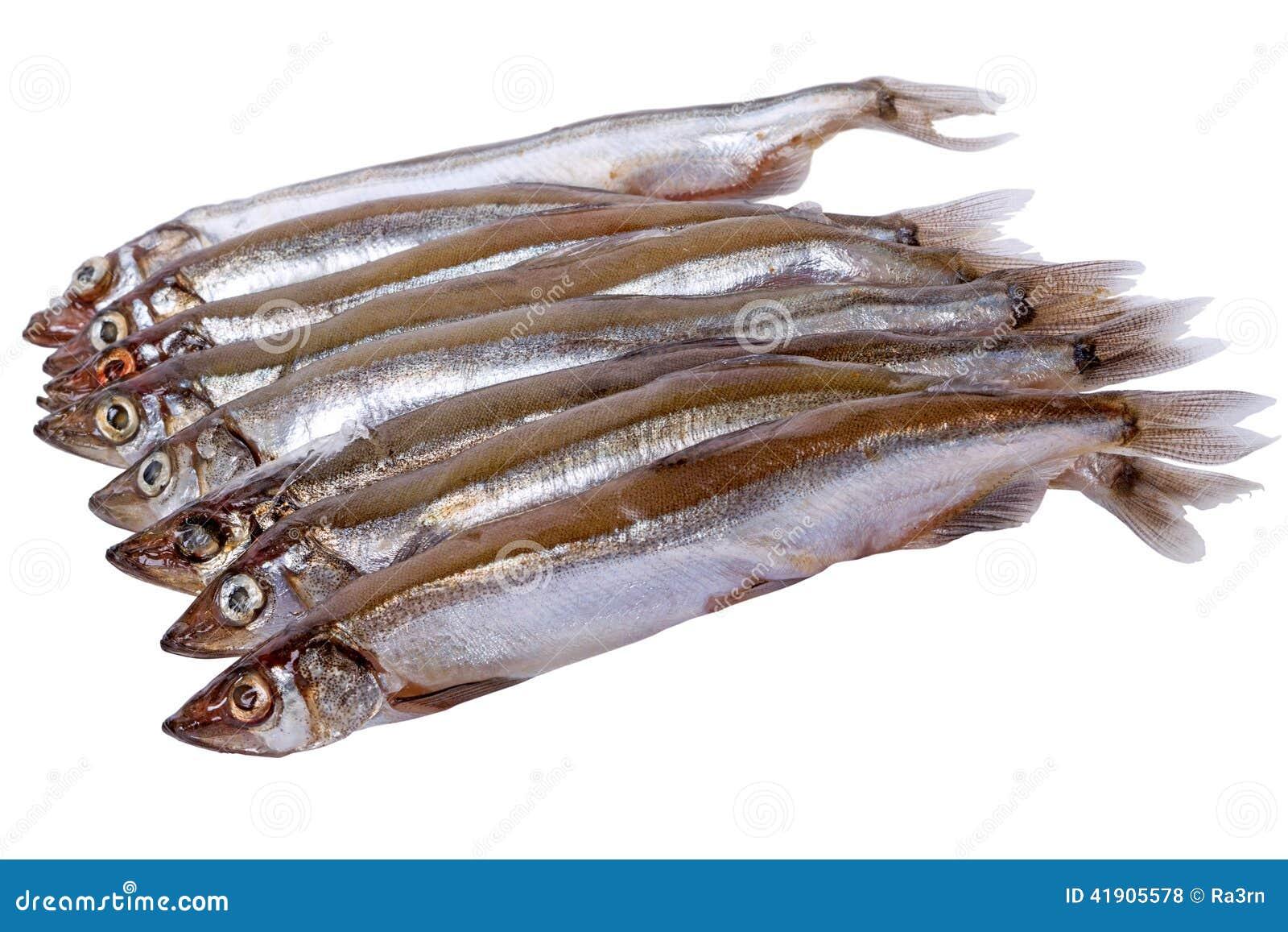 Pescados del capelín