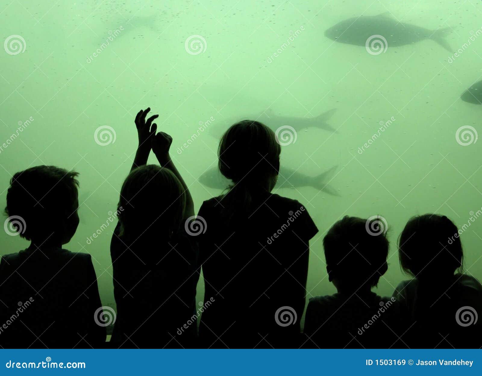 Pescados del reloj de los niños