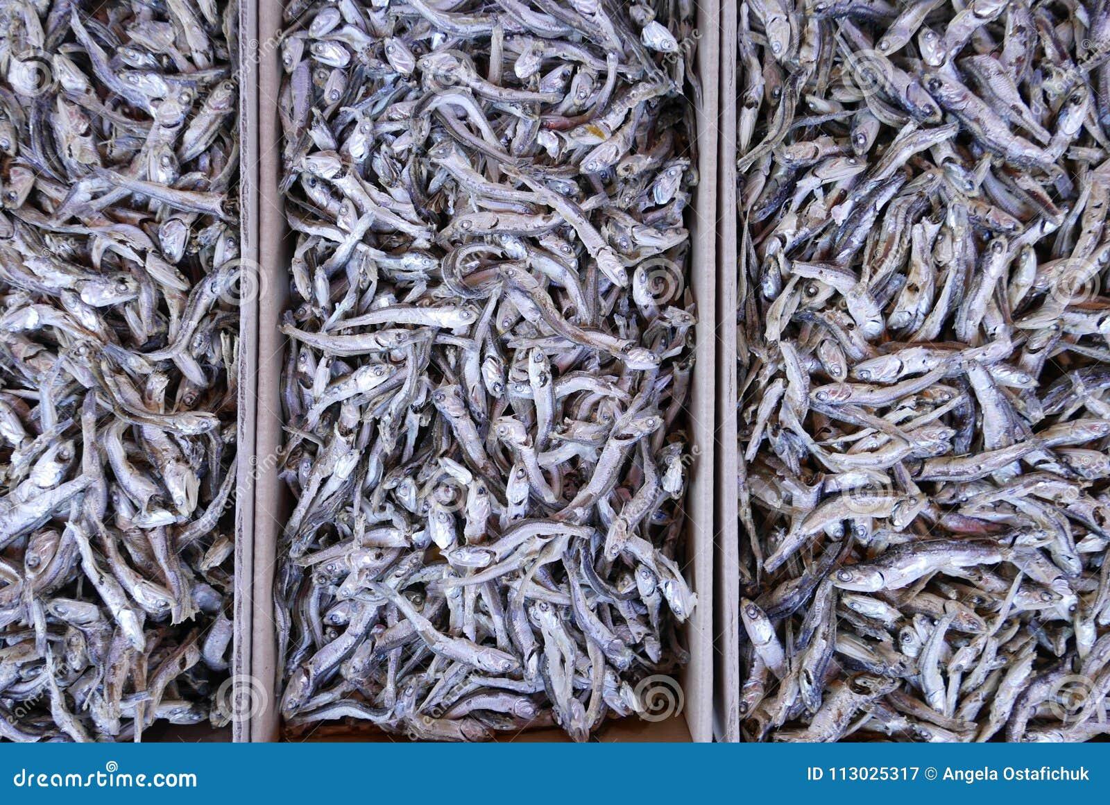 Pescados para la venta en mercado coreano
