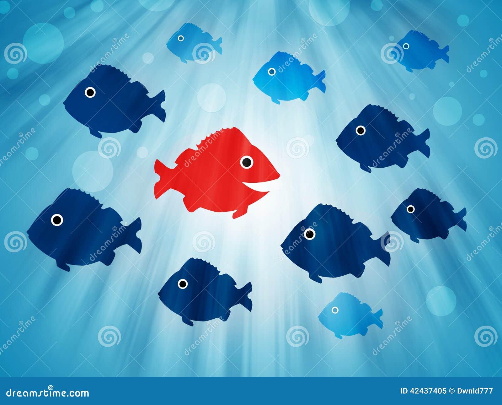 Pescados que nadan enfrente de la dirección