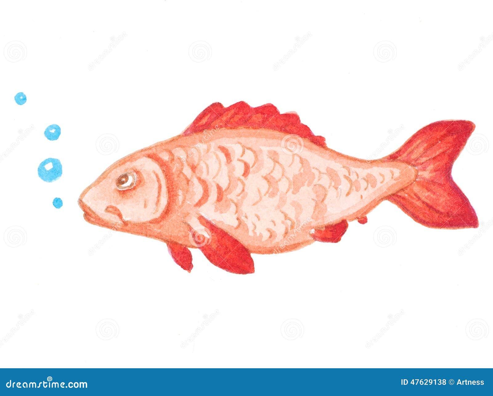 Pescados rojos del acuario de la acuarela