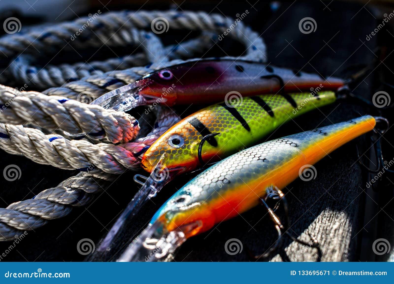 Pescando atrações