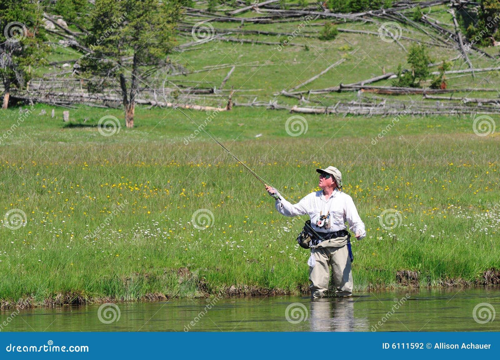 Pescatore maggiore attivo