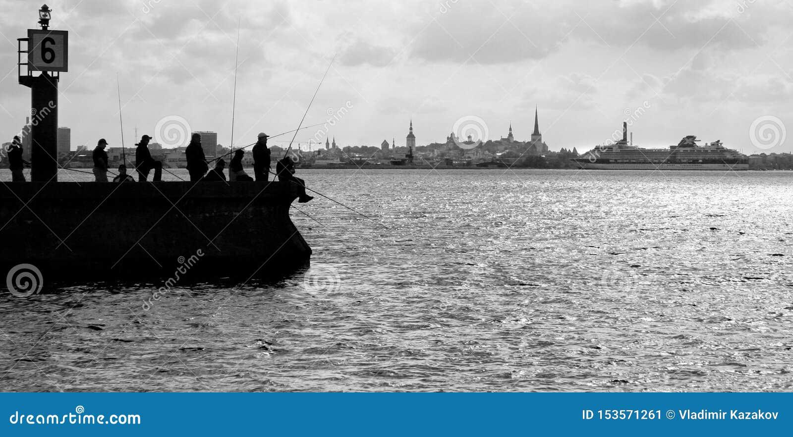 Pescatori della foto della siluetta nella pesca della lampadina sulla talpa sui precedenti di Tallinn Un grande traghetto si avvi