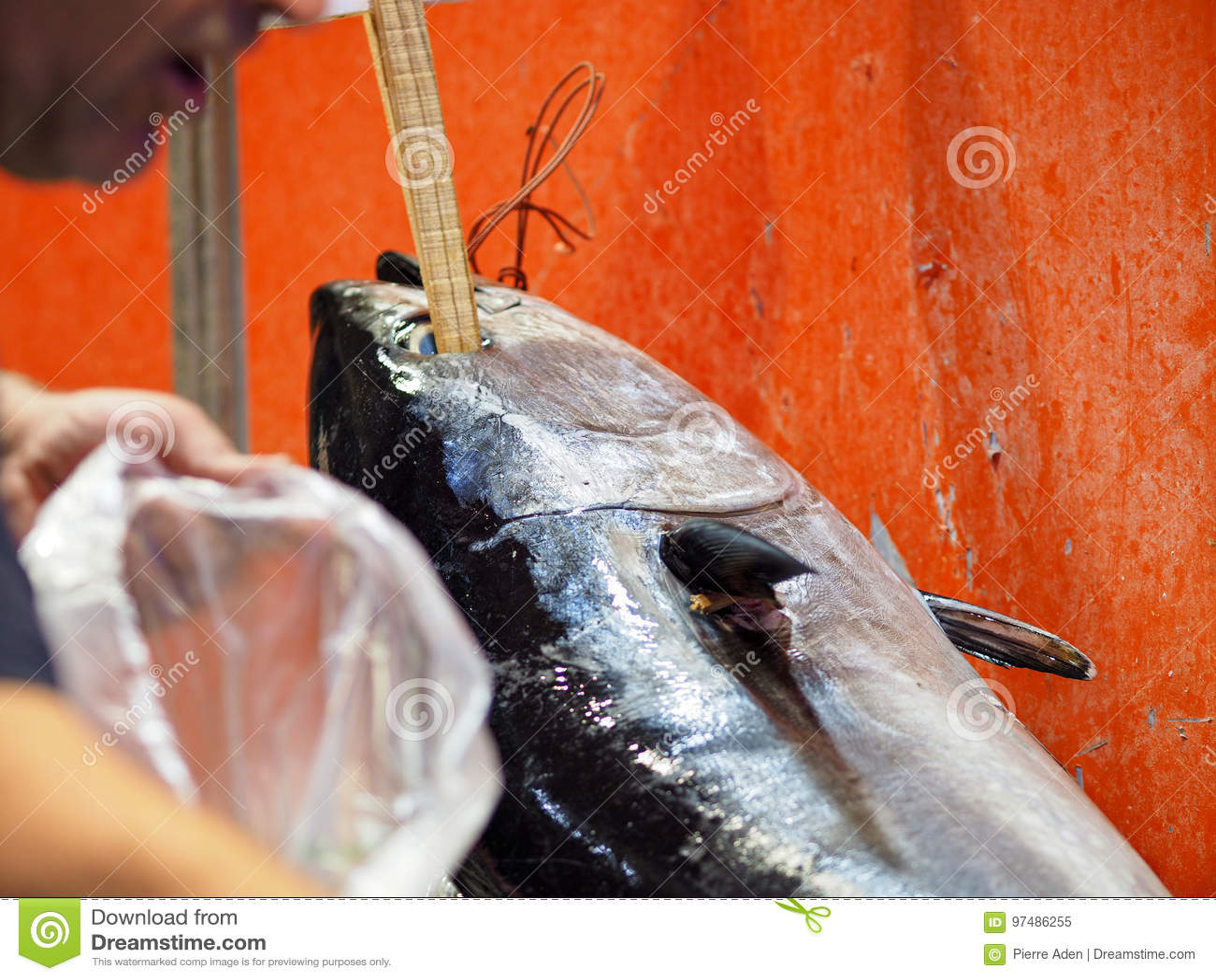 Pesce con il bastone in occhio su fishmarket