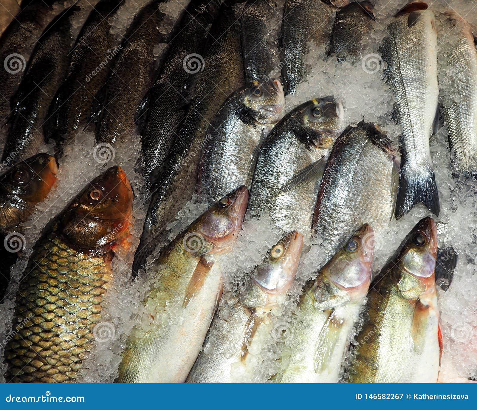 Pesce congelato sul ghiaccio nel mercato dell alimento