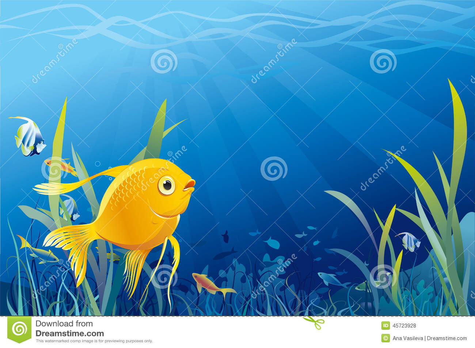Pesce dell oro, illustrazione vita subacquea