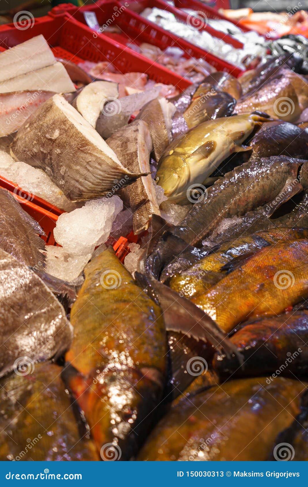 Pesce fresco da vendere sul mercato dei frutti di mare