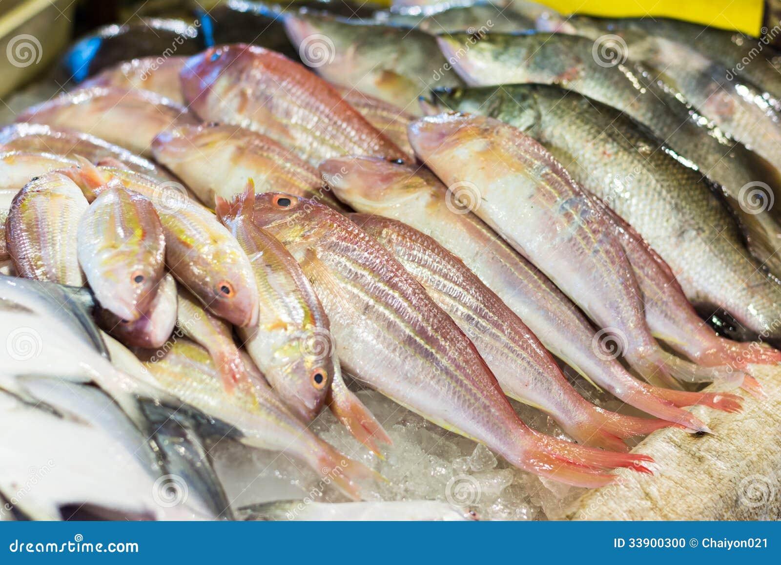 Pesce fresco dell 39 orata e del branzino fotografia stock - Pagina di colorazione del pesce ...