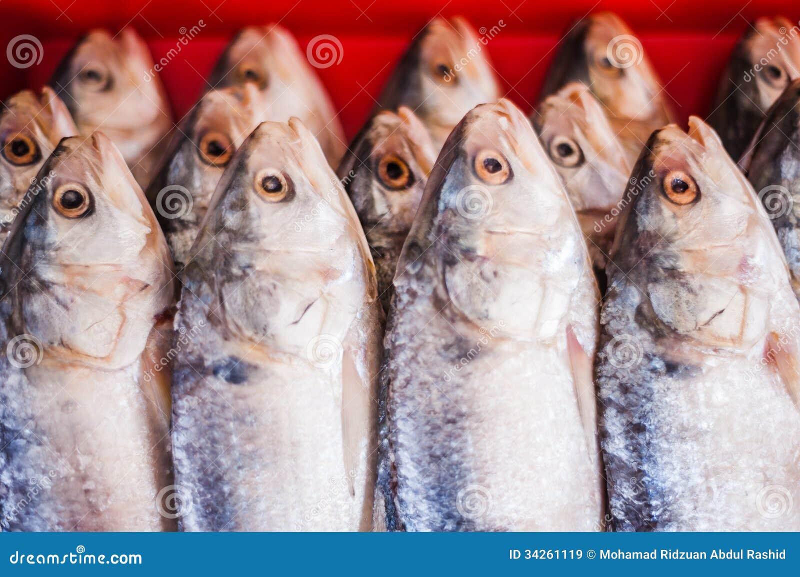 Pesce salato
