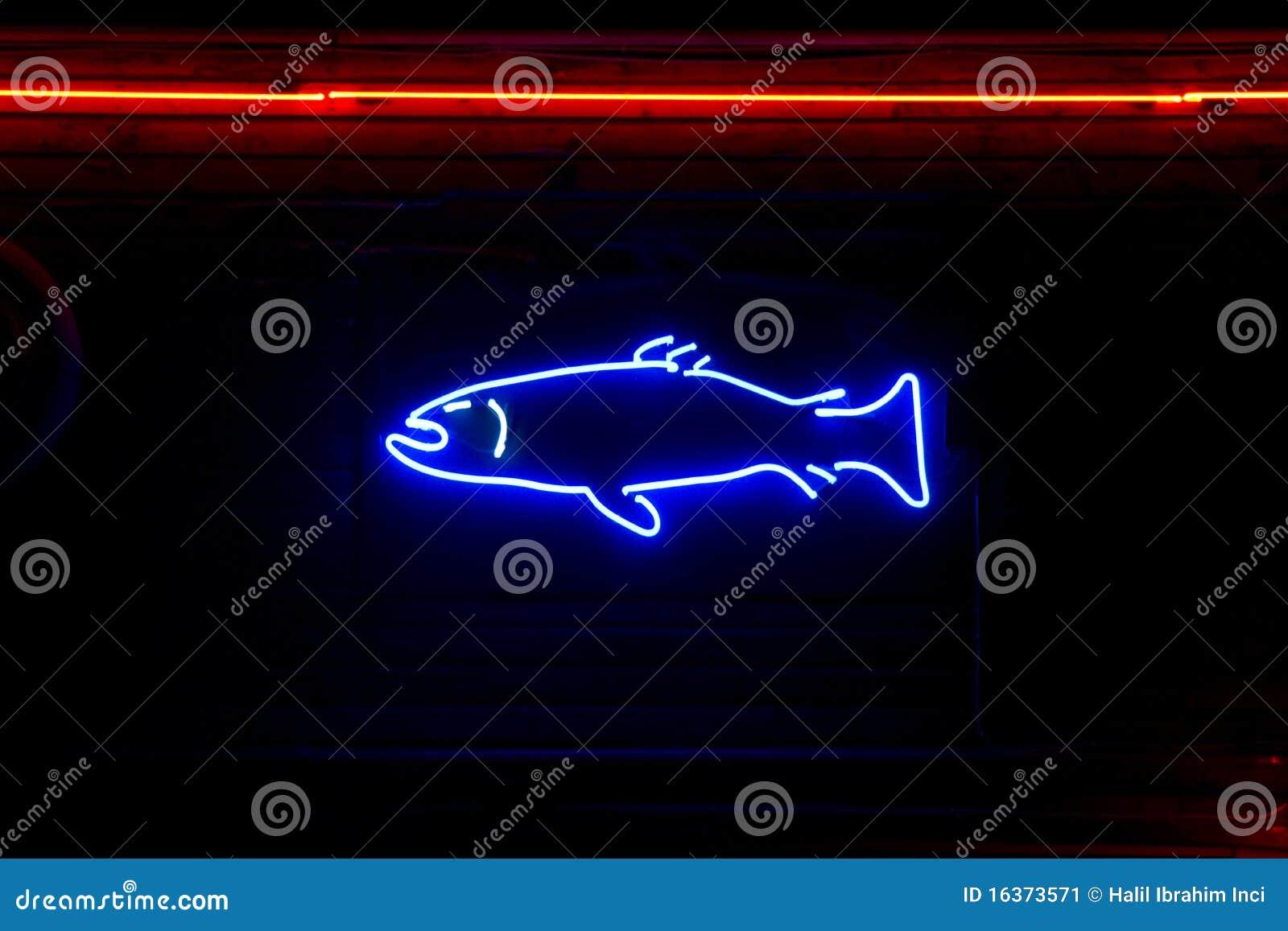 Pesci al neon immagine stock immagine di mercato aperto for Neon pesci prezzo