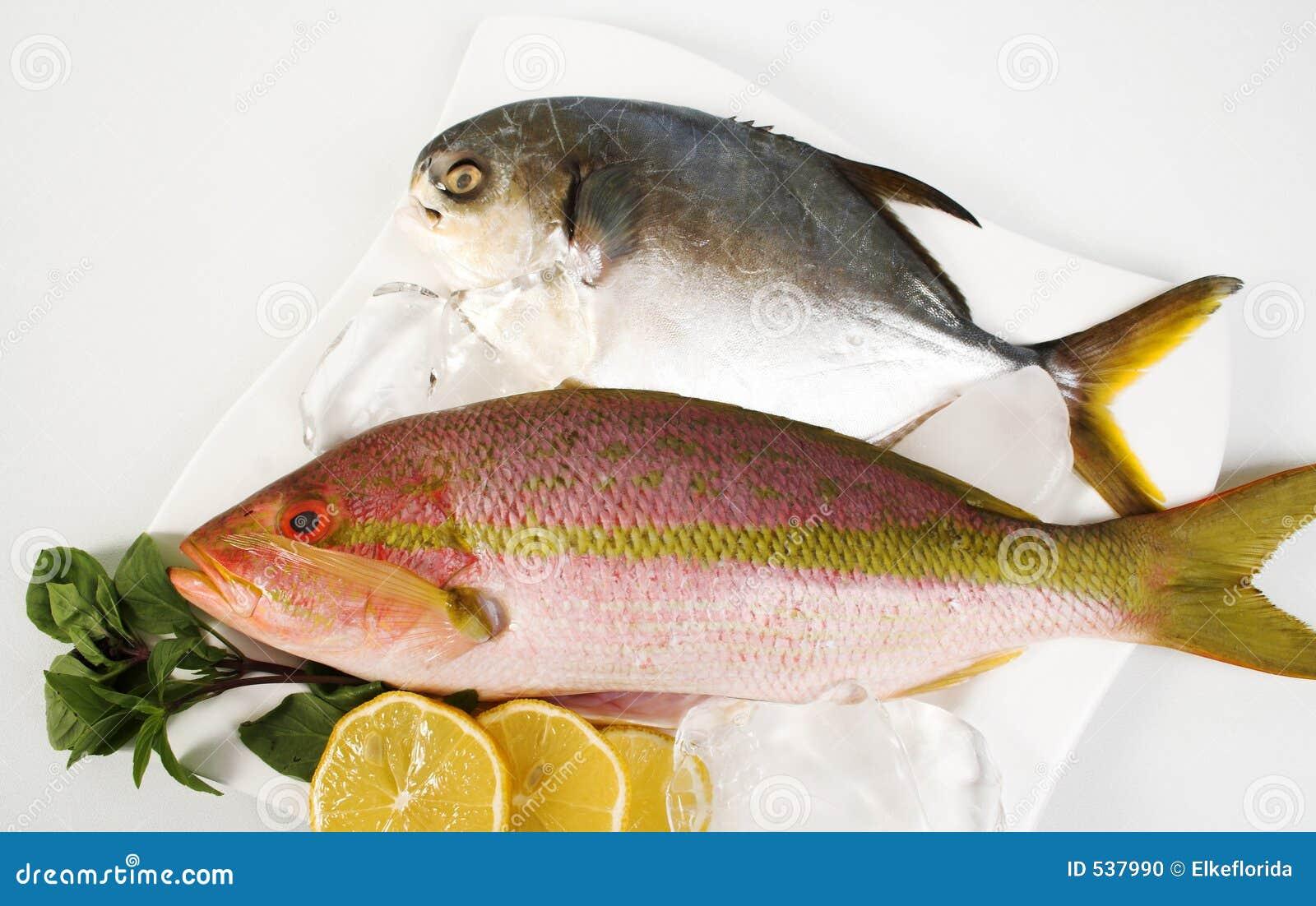 Pesci castagna e snapper