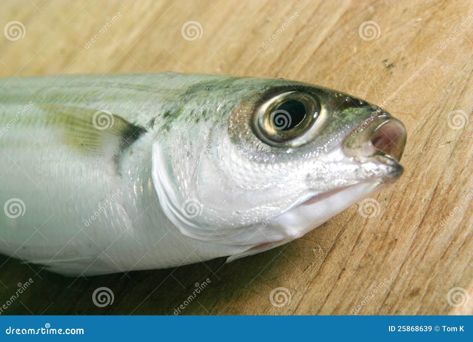 pesci-della-boga-sulla-tabella-di-legno-